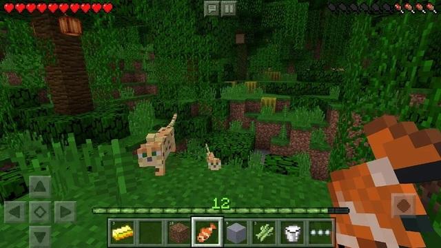 Minecraft - Multiplayer Games