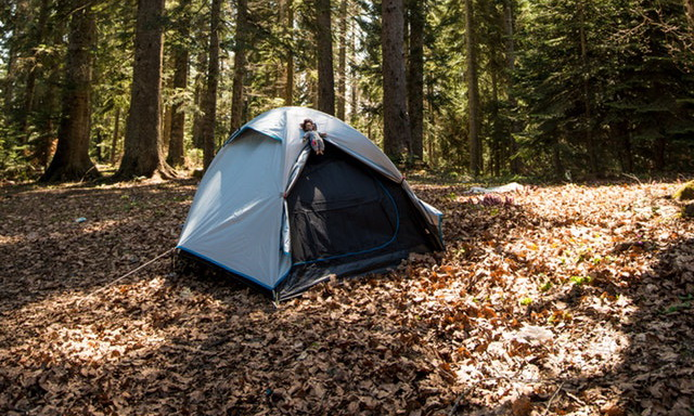 Best Camping Apps for Android