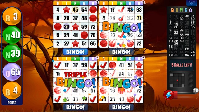 Bingo by Absolute Games