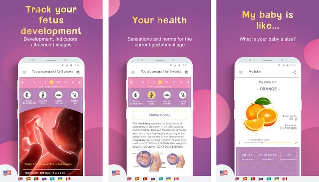 Pregnancy Tracker by Mobile Dimension