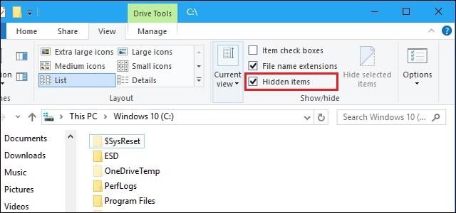 Show Hidden Files and Folders in Windows 10