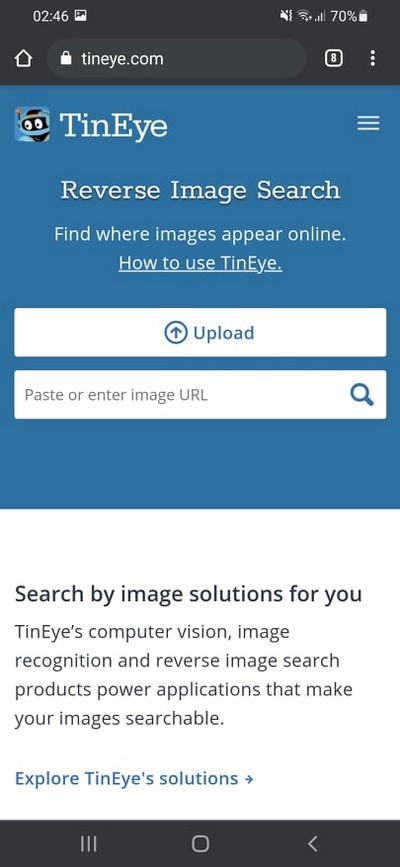 How to do a Reverse Image Search Using TinEye